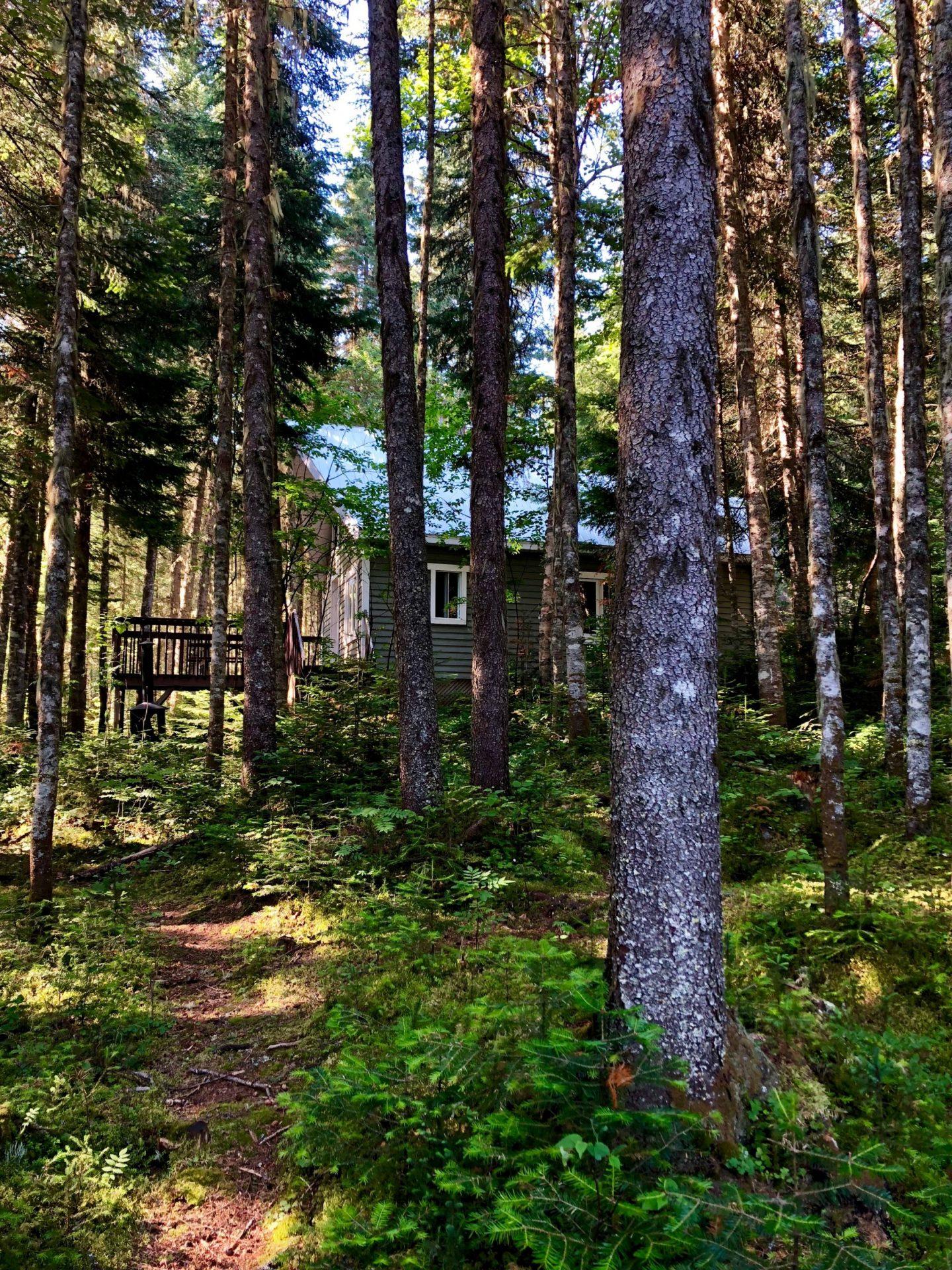 Prêt-à-camper de dernière minute près de Québec (Forêt Montmorency)