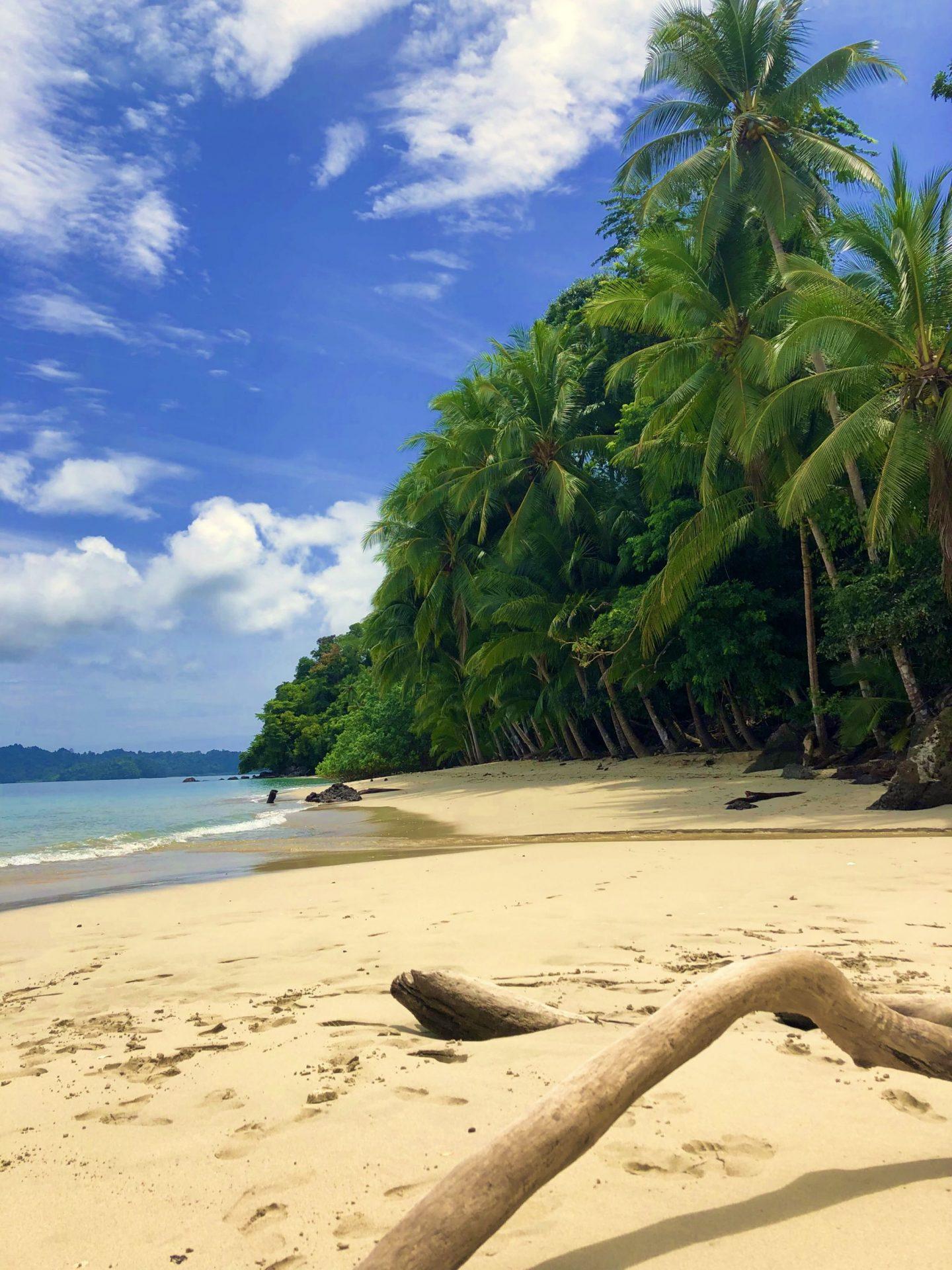 Un petit coin de paradis au Panama