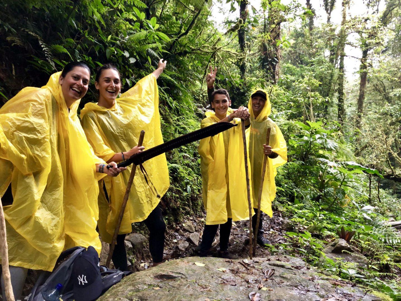 Rando dans la jungle à Boquete au Panama