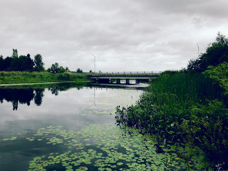 Début du parcours de paddle board de la rivière aux cerises