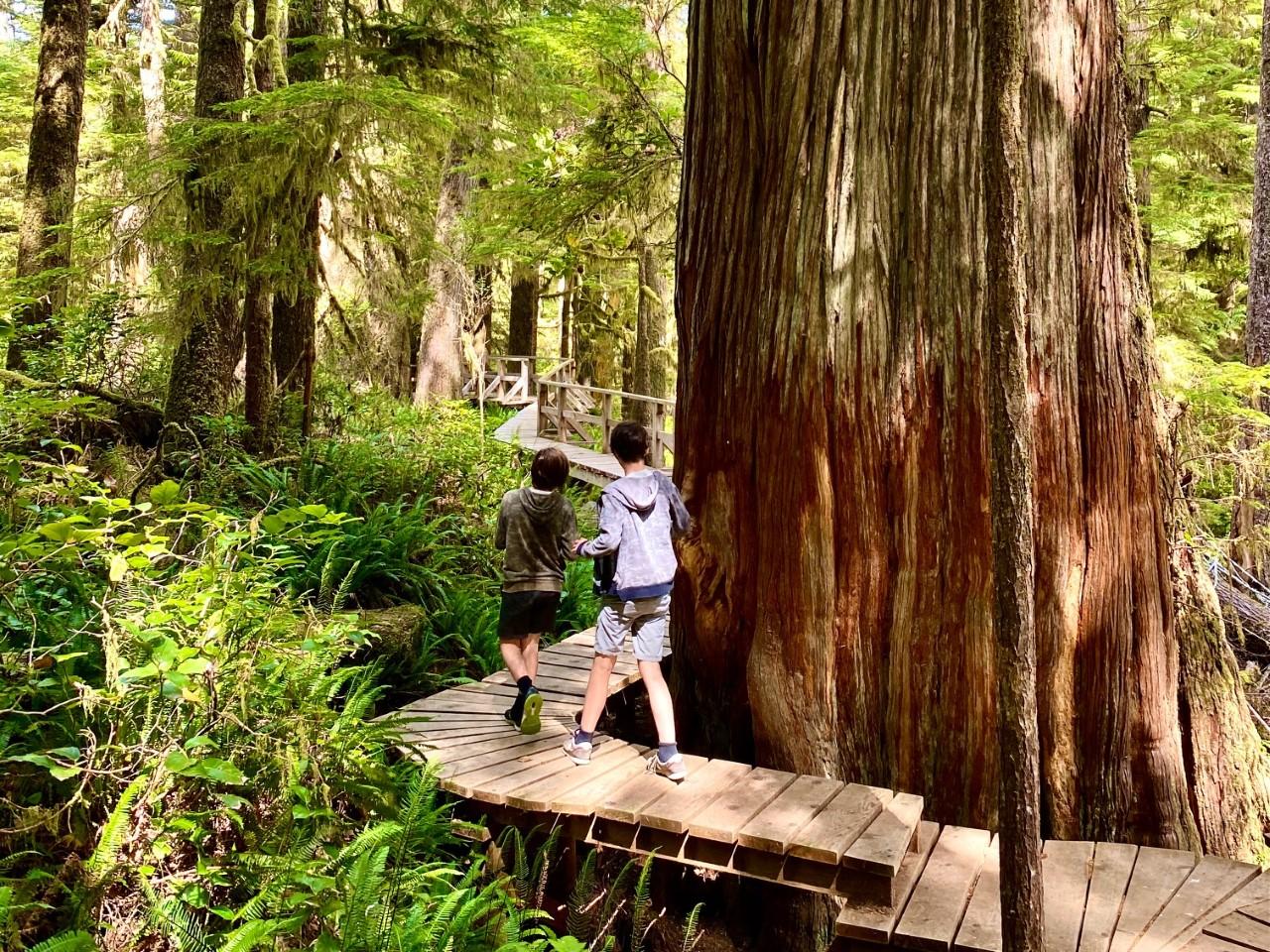 7 activités en famille à ne pas manquer sur l'île de Vancouver